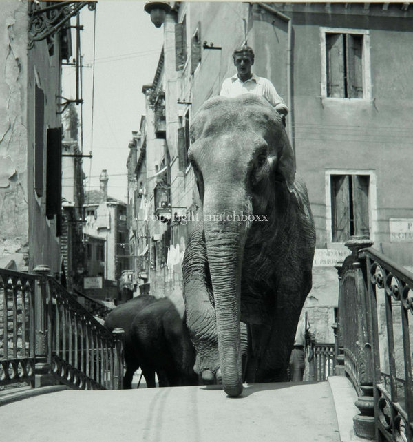 Venice Circus Getting up the Stairs 1954